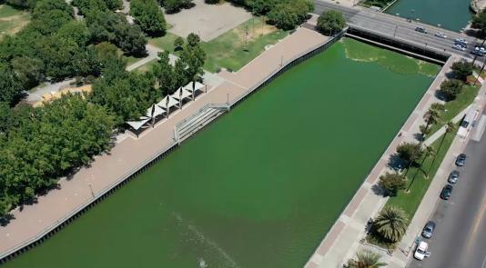 Stockton harmful algae bloom