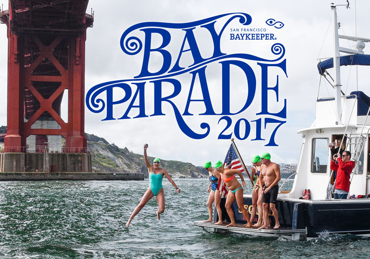 2017 Bay Parade Golden Rivet Swim