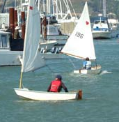 Dinghy racers