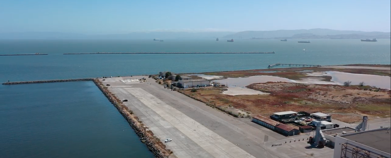 Good Choice, Alameda! Replace Pavement with a Healthy New Wetland
