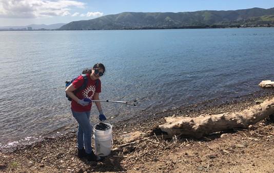 Cleanup volunteer