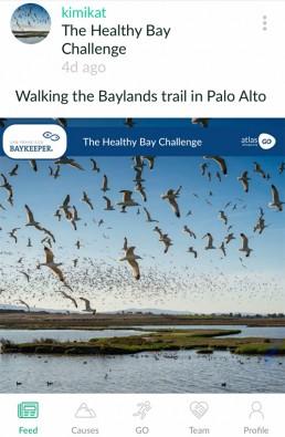 Healthy Bay Challenge