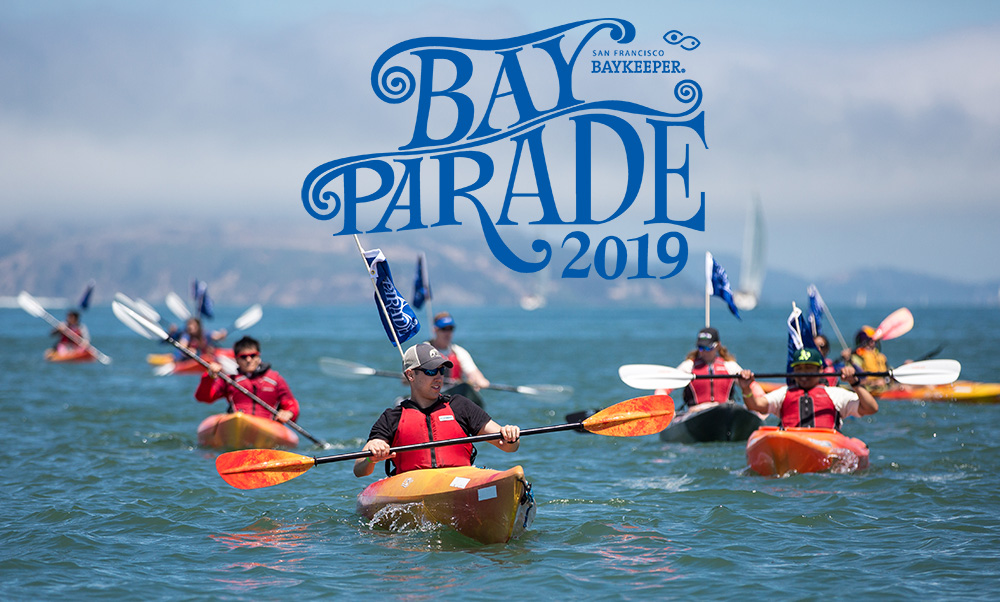 2019 Bay Parade kayak